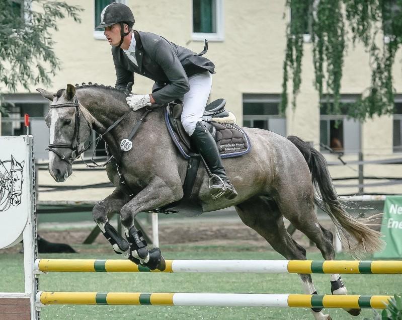 Turnier des RV Reitstadion Salzwedel: 617 Reiter-Pferd-Paare an drei Tagen gefordert